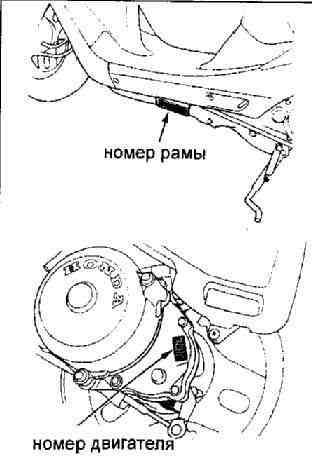 Скутеры фирмы Honda отличаются
